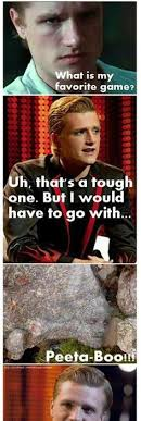 Hunger Games Memes Funny - best funny quotes best 25 hunger games memes hunger games funny