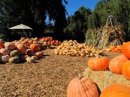 halloween events in monterey county