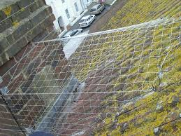 How To Get Rid Of Pigeons Off My Roof how to stop seagulls nesting behind a chimney stack no more birds
