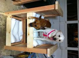 Dog Bunk Beds Furniture by Ana White Doggy Bunk Bed Diy Projects