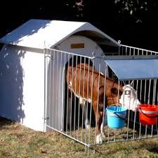 Plastic Calf Hutches Steel Hutch All The Agricultural Manufacturers Videos