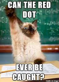 Meme Questions - question cat album on imgur