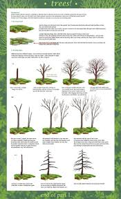 100 type of trees let u0027s stay play dine and shop an