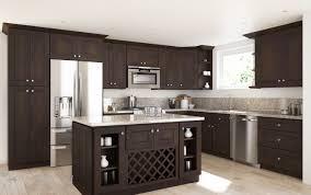 replacing kitchen cabinet hinges kenangorgun com kitchen
