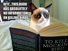 To Kill A Mockingbird Cat Meme - to kill a mockingbird she read further there is no