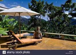 jamaica west indies blue mountains house and studio of chris