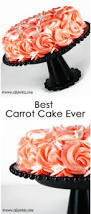 best 25 best carrot cake ideas on pinterest best carrot recipe