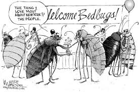 Bed Bugs New York City Occupation Bedbug Or The Urgency And Agency Of Professional