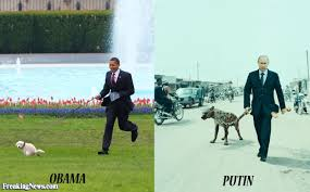 Obama Dog Meme - barack obama s pet vs vladimir putin s pictures freaking news