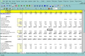 screen shot cashflow plan cash flow plan cashflow planner cash