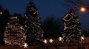 commercial led tree lights outdoor christmas tree lights amazing design outdoor tree lights