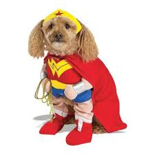 Halloween Pet Costume Halloween Pet Costumes 2016 Bark Swagger