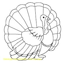 free printable coloring pages for thanksgiving turkey printable