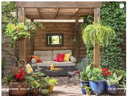 Backyard Plants Ideas Fascinating Gallery Patio Plants Ideas Brilliant Potted Plant