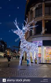 illuminated reindeer part of the decorations in argyle