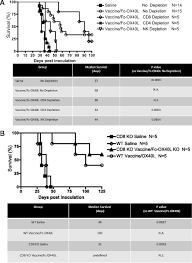 cd8 t cell u2013independent tumor regression induced by fc ox40l and