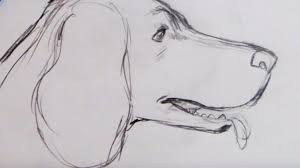 15 basic drawing techniques for beginners