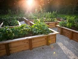 skillful design raised bed vegetable garden design