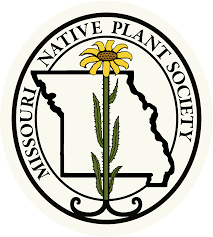 russian native plants missouriensis missouri native plant society