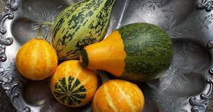 how to preserve gourds and display them new today