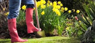 Lawn Care Programs For Do It Yourself Monthly Maintenance Checklists For Your Garden Spring