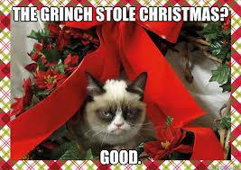 Cat Christmas Memes - a grumpy cat christmas memes quickmeme