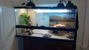 daner923 wrote here s my set up sorta i ve rearranged a few things since but the lights and all are the same
