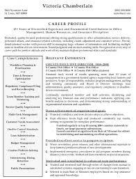 executive director resume unique ideas executive director resume sles managing cv resume
