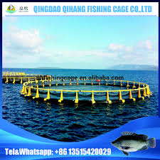 hdpe plastic fish farming tilapia floating net circular