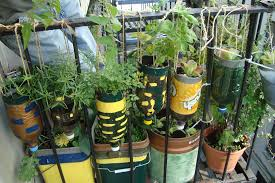 Recycling Ideas For The Garden Gardening From Recycled Items