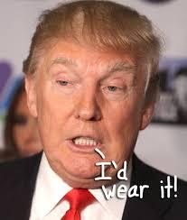 Donald Trump Halloween Costume Wanna Celebrate Halloween Donald Trump Check