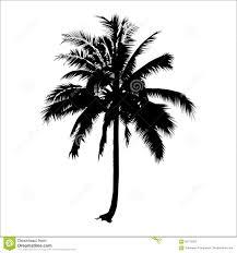 silhouette coconut tree vector logo design plant stock