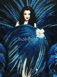 feather fans buy burlesque feather fan for sale at reasonable price hot fans