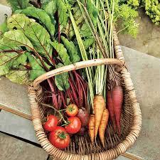73 best gardening year round images on pinterest conservatory