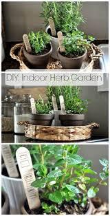 Indoor Herb Garden Ideas by Hanging Herb Mason Jars Fresh Herbs Garden Ideas And Herbs