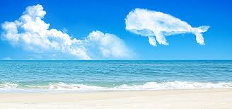 a brighter future blue sky sea blue warm background image for