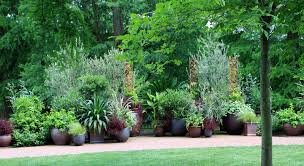 Potted Garden Ideas Potted Garden Gardening Design