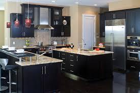 black kitchen ideas modern kitchen cabinets black interior design