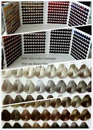 silky hair color chart for dye factory price hair color chart hair