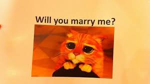 Meme Marriage Proposal - cheesy or romantic man uses internet memes for a marriage proposal