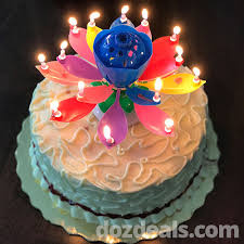 lotus birthday candle amazing lotus musical birthday candle online shopping for