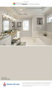 what color kitchen cabinets go with agreeable gray walls agreeable gray kitchen cabinets silver macaubas page 1