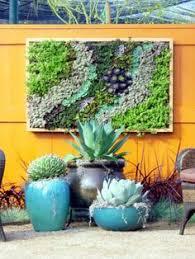 inspiring garden decoration ideas succulent wall walls and