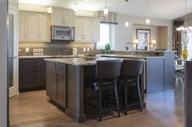 14 best transitional kitchen cabinets images on pinterest