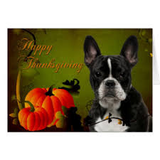 bulldog thanksgiving bulldog gifts on zazzle
