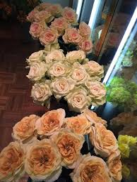 spring is blooming in our store with faux flowers evantine