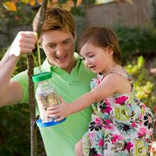 bird feeder diy made from recycled bottle youtube