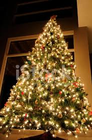 christmas tree with white lights and red bows christmas tree with white lights and red stock photos freeimages com