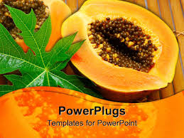 powerpoint template a paw paw cut in half showing its seeds and a