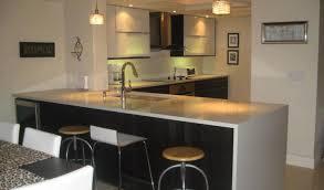Houston Kitchen Cabinets by Warmth Custom Wood Kitchen Cabinets Tags European Kitchen